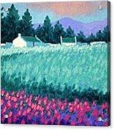Turquoise Meadow Acrylic Print