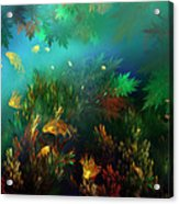 Underwater World Acrylic Print