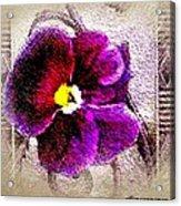 Vibrant Violet  Acrylic Print