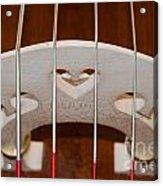 Violoncello Acrylic Print