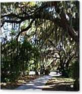 Walking Path Acrylic Print