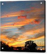 Evening Washington Monument Acrylic Print