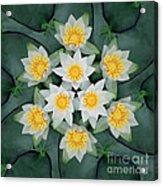 Waterlily Mandala Acrylic Print