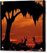Wetland Wildlife - Sunset Sky Acrylic Print