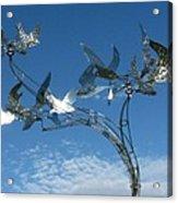 Whirlybird Acrylic Print