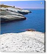 White Chalk Cliffs Eroded Coastline Acrylic Print by Dirk Ercken