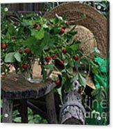 Wild Strawberries Acrylic Print