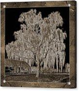 Willow Ranch Acrylic Print
