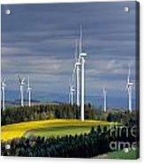 Wind Turbines Acrylic Print