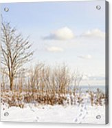 Winter Shore Of Lake Ontario Acrylic Print