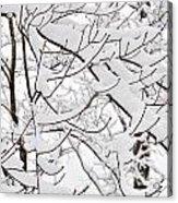 Winter Snow Scene In New England Acrylic Print