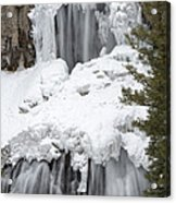 Yellowstone Falls Acrylic Print by David Yack