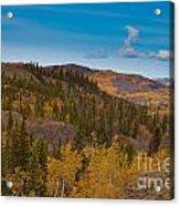 Yukon Gold - Fall In Yukon Territory Canada Acrylic Print