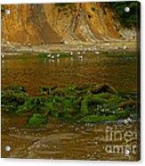Sunset Bay State Park Acrylic Print