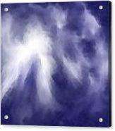 2001007 Acrylic Print