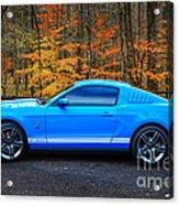 2010 Shelby Gt500 Acrylic Print