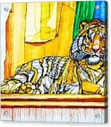 2010 Year Of The Tiger Acrylic Print