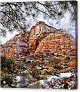 20100101-dsc05481 Acrylic Print