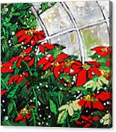 2013 010 Poinsettias And Dots Conservatory At The Us Botanic Garden Washington Dc Acrylic Print