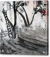 2013 058 Tree And Ladder Alexandria Virginia Silver Black White Red Acrylic Print