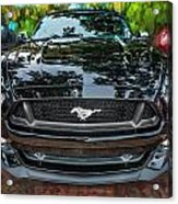 2015 Ford Mustang Gt Painted   Acrylic Print