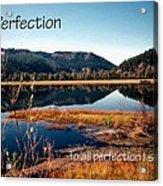 21042 Perfection 2 Acrylic Print