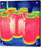 Thermogram Acrylic Print