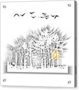 2503 Acrylic Print