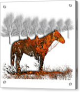 2610 Acrylic Print