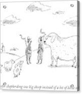 I Prefer Shepherding One Big Sheep Instead Acrylic Print