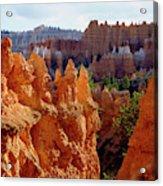 Usa, Utah, Bryce Canyon National Park Acrylic Print