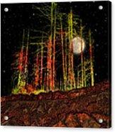 2806 Acrylic Print