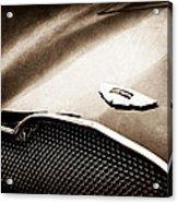 1953 Aston Martin Db2-4 Bertone Roadster Hood Emblem Acrylic Print