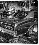 1967 Pontiac Gto Bw Acrylic Print