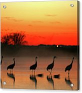A General View Of The National Park Acrylic Print