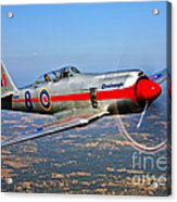 A Hawker Sea Fury T.mk.20 Dreadnought Acrylic Print