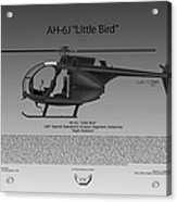 Ah-6j Little Bird Acrylic Print
