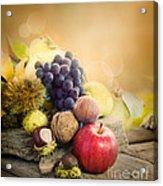 Autumn Fruit Acrylic Print