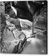 Avalanche Gorge Glacier National Park  Bw  Acrylic Print