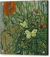Butterflies And Poppies Acrylic Print