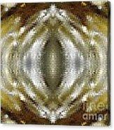 Cafe Au Lait Kaleidoscope Acrylic Print