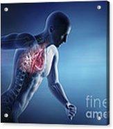 Cardiovascular Exercise Acrylic Print
