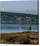 Chambers Bay Golf Course - University Place - Washington Acrylic Print