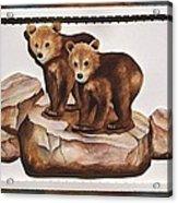 3-d Bearizona Bear Babies Acrylic Print