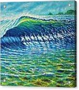 Dolphin Surf Acrylic Print by Joseph   Ruff