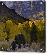 Eastern Sierras In Autumn Acrylic Print