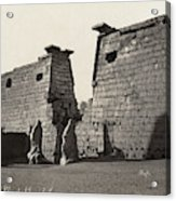 Egypt Luxor Temple Acrylic Print