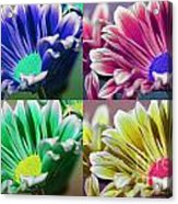 Firmenish Bicolor Pop Art Shades Acrylic Print