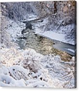 Forest Creek After Winter Storm Acrylic Print