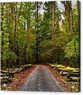 Great Smoky Mountains Acrylic Print by Janice Spivey